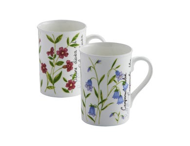 Image for Botanical Assorted Bone China Mugs